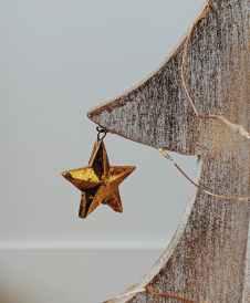 little golden star